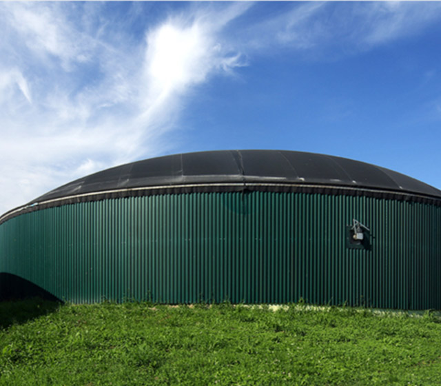Biogas And Biomass Power Plant Projects